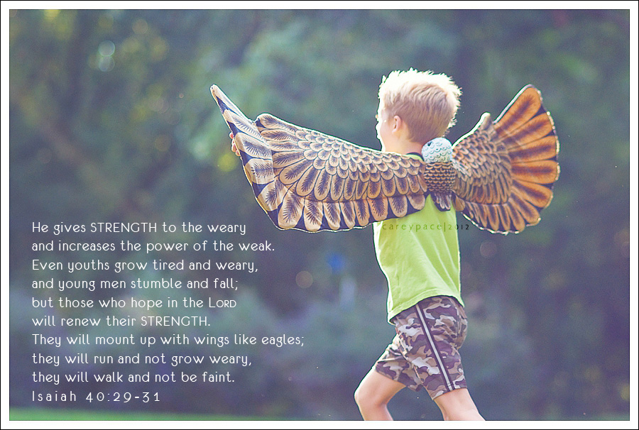 Strength; Isaiah 40; mount up with wings like eagles; project 26
